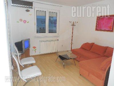 Izdavanje, Stan, BEOGRAD, NOVI BEOGRAD, BLOK 28, 45 m2, 350 EUR mesecno - id#28225