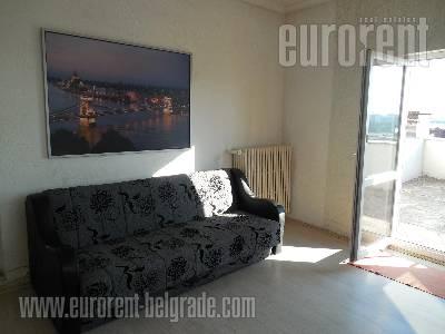 Izdavanje, Stan, BEOGRAD, SAVSKI VENAC, CENTAR, 48 m2, 390 EUR mesecno - id#37164